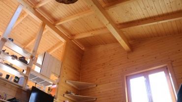 Casa din lemn H8
